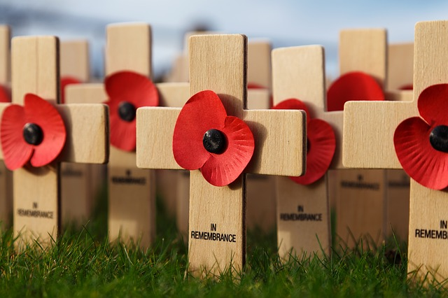 Fake poppy sellers diverting cash away from charities
